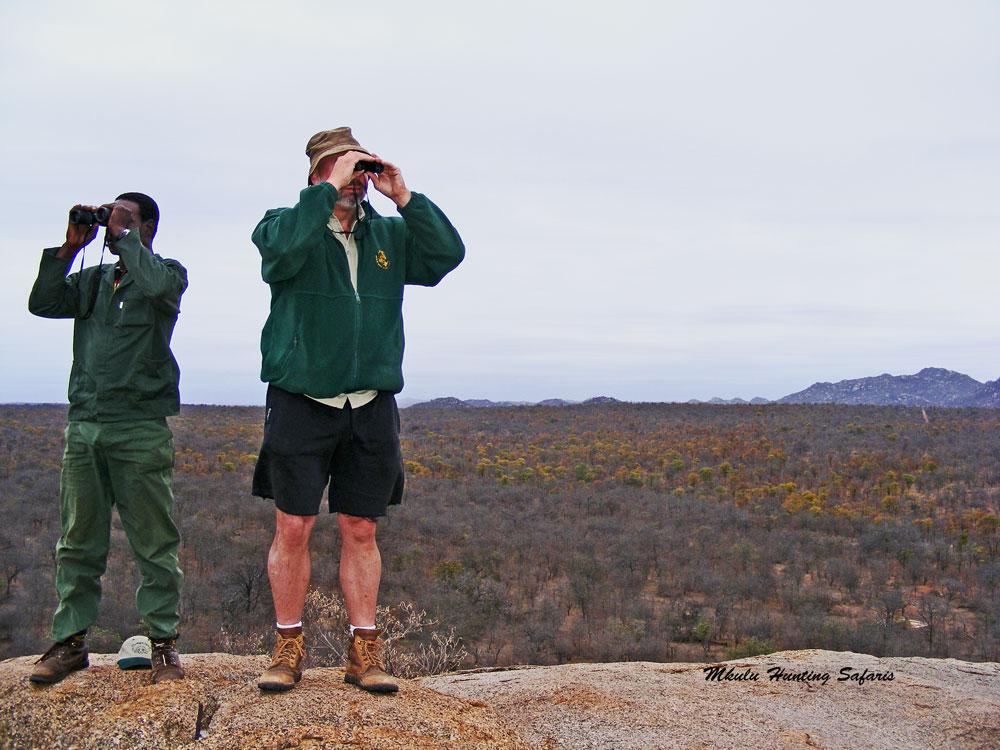 Bushveld hunting near Kruger National Park