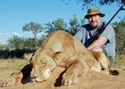 Lioness hunting South Africa