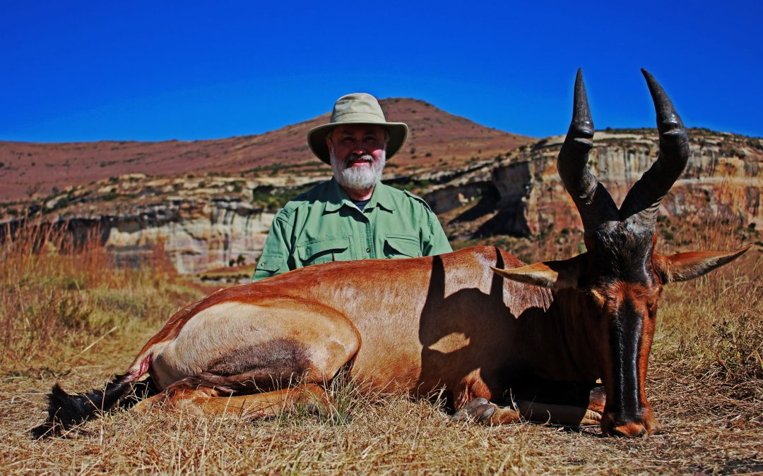 Ultimate hunting in Africa package