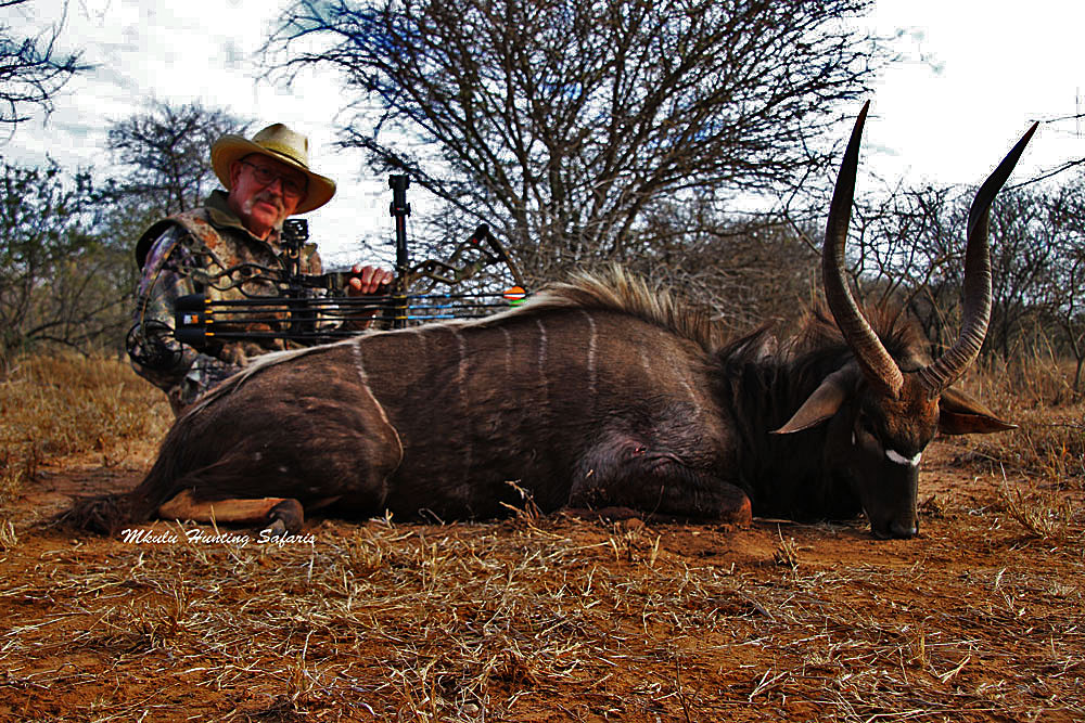 Bow hunting nyala South Africa