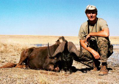 Black wildebeest hunting prices