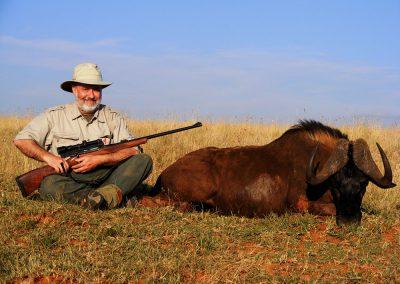 Black wildebeest price