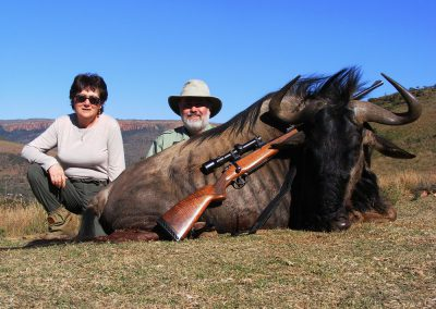 Blue wildebeest hunting prices