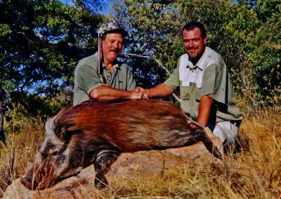 Bushpig hunting prices South Africa caliber