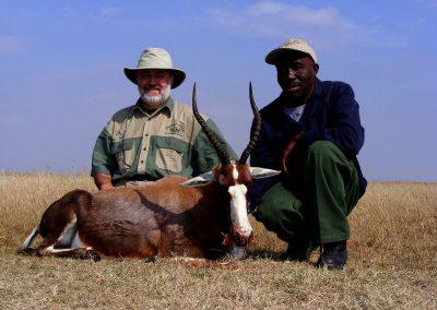 Hunting blesbok