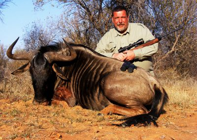 Hunting blue wildebeest shot placement