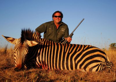 Hunting mountain zebra