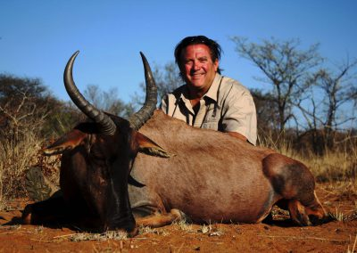 Hunting tsessebe South Africa