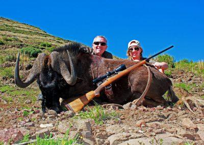 Ladies hunting in Africa black wildebeest