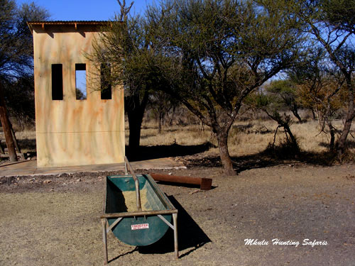South African bow hunting blind