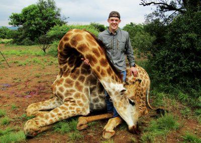 Hunting giraffe in South Africa