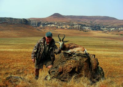 Hunting trophy animals of Africa copper springbok
