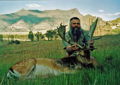 Hunting trophy animals of Africa fallow deer