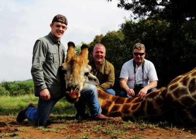 Hunting trophy animals of Africa giraffe