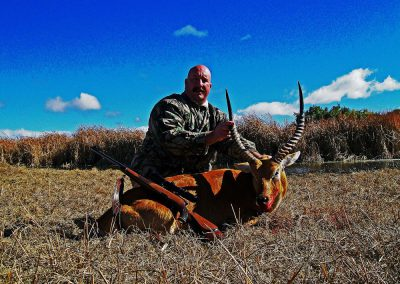 Hunting trophy animals of Africa red lechwe