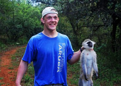 Hunting vervet monkey South Africa