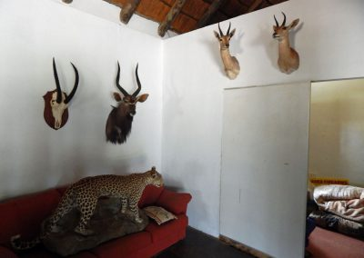 Lounge in hunting camp