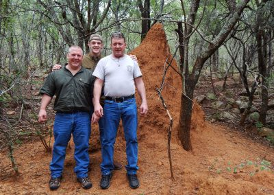 Termite mound South Africa