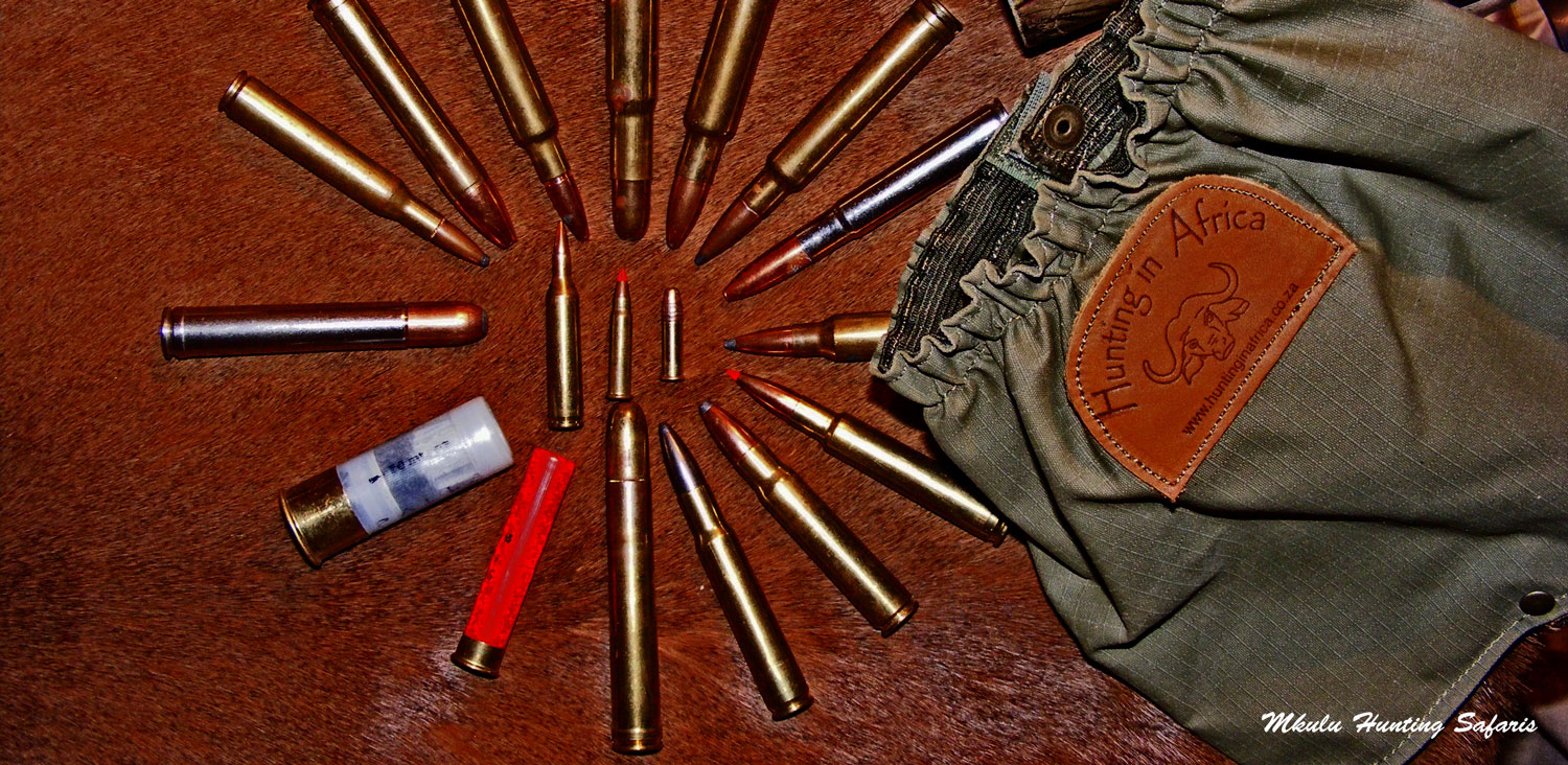 Five best calibers for hunting Africa