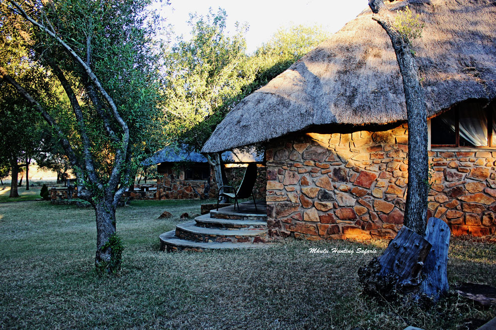 Bowhunting accommodation South Africa