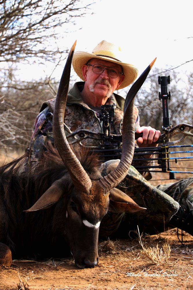 Bow hunting nyala South Africa KZN