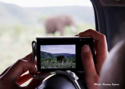 Hunting big game in Africa with Gun and Camera
