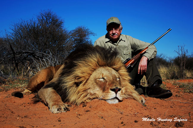 African lion hunting packages