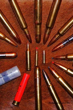 Best caliber