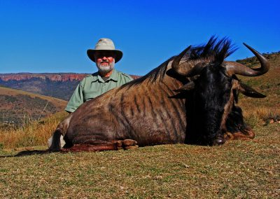 Ultimate African hunting package blue wildebeest