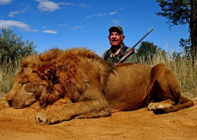 Best caliber for lion hunting in South Africa