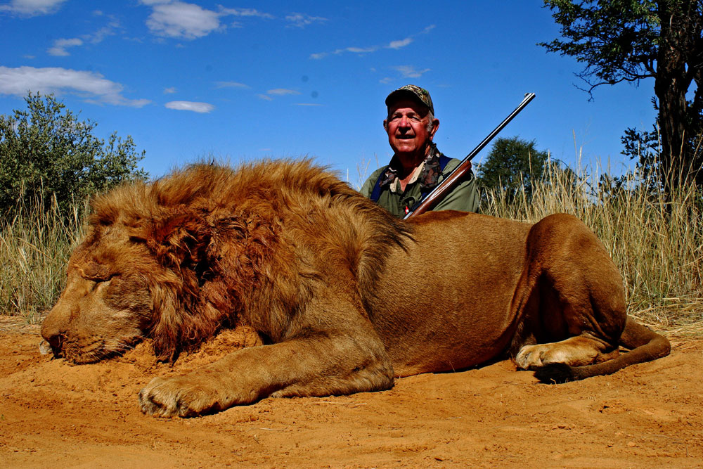South African lion hunting safaris