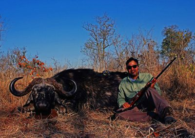 Cape buffalo hunting