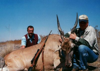 Eland hunting in South Africa
