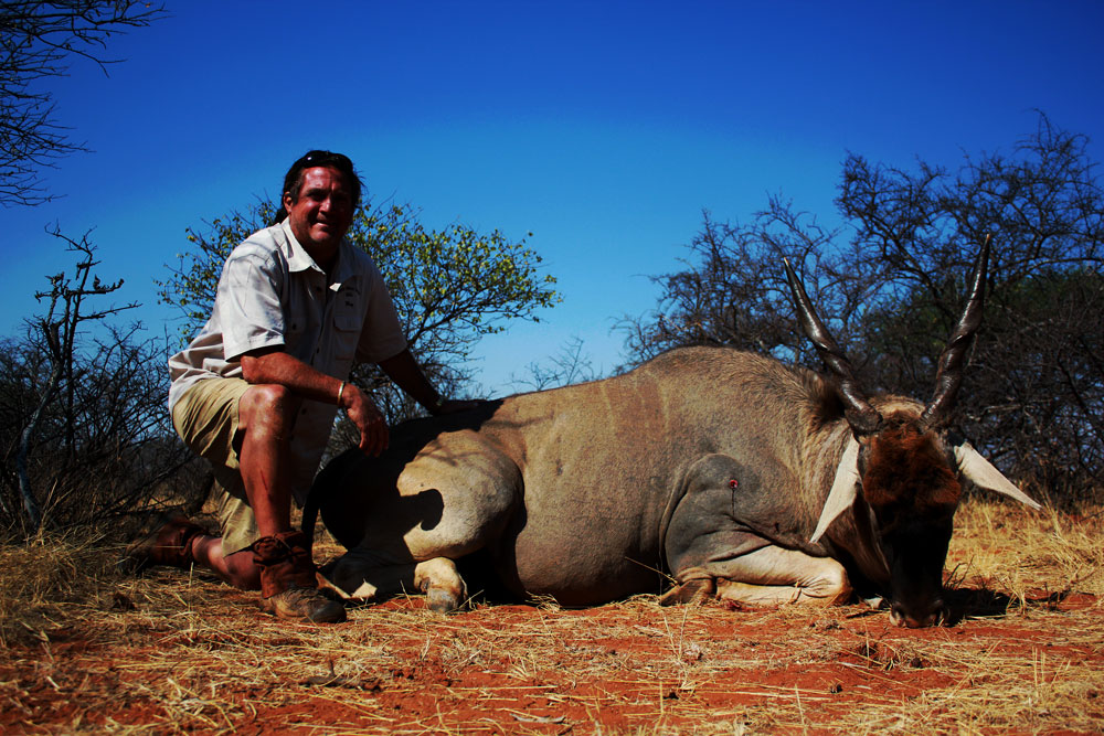 Hunting Eland In South Africa With Mkulu African Hunting Safaris
