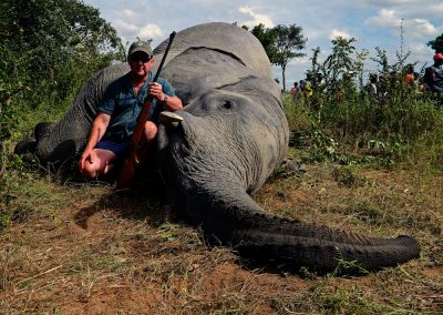 Elephant hunting in South Africa