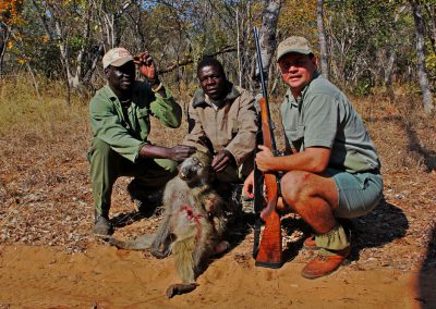 Hunting baboons in Africa