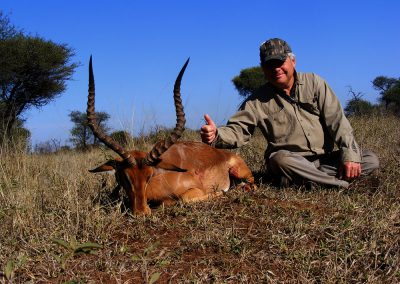 Hunting impala in Africa