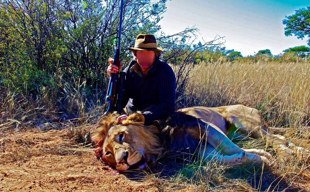 Hunting category 3 lions in South Africa
