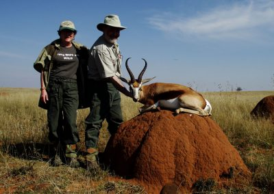 Hunting springbok in South Africa