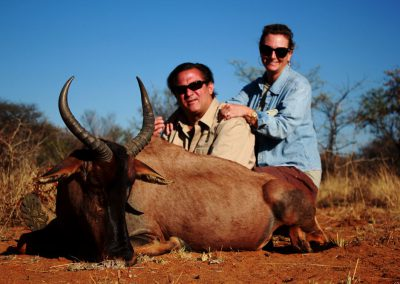 Hunting tsessebe in South Africa