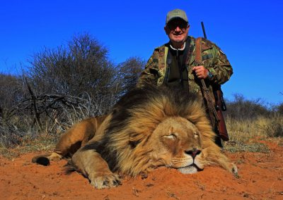 Lion hunitng in South Africa is legal
