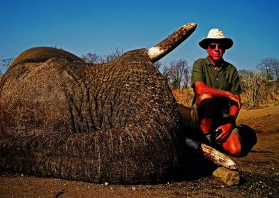 South Africa elephant hunting price