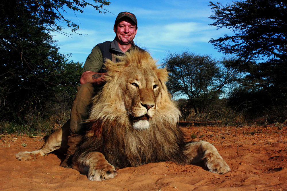 Lion hunting packages in South Africa