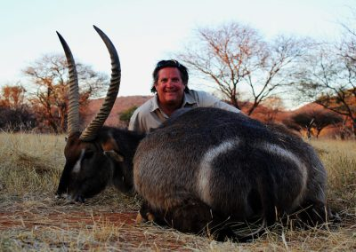 Waterbuck hunting in South Africa