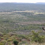 Hunting terrain North West Province