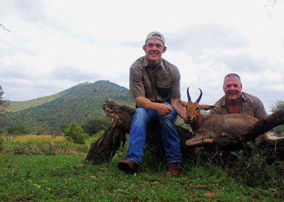 Hunting trophy animals of Africa mountain reedbuck