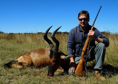 Hunting trophy animals of Africa red hartebeest
