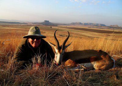 Hunting trophy animals of Africa springbok