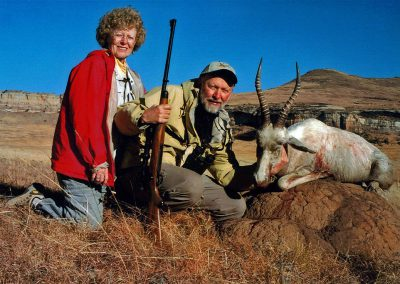 Hunting trophy animals of Africa white blesbok