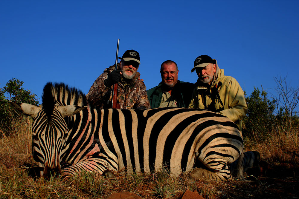 Hunting zebra South Africa Barnes-X